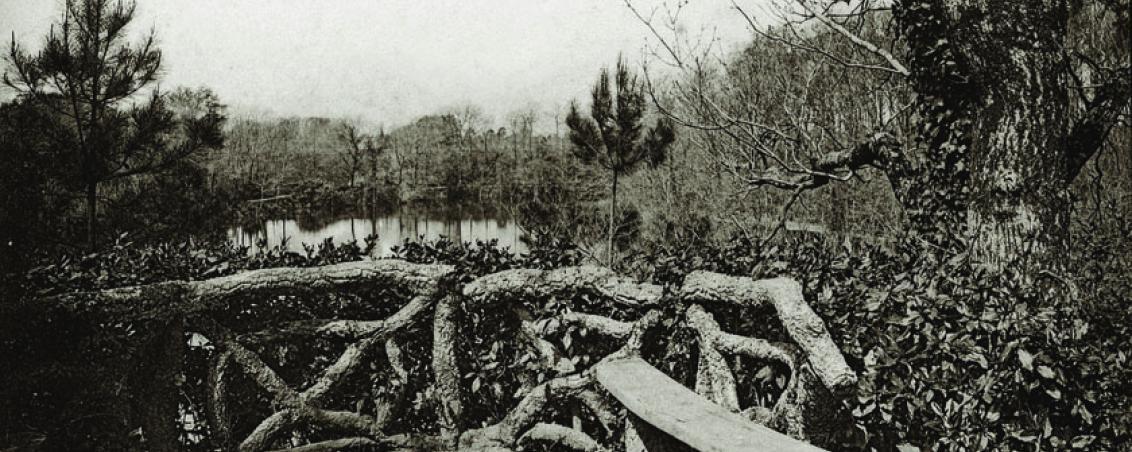 Le belvédère offrait une vue imprenable sur le lac. 1929, Ville de Tarnos