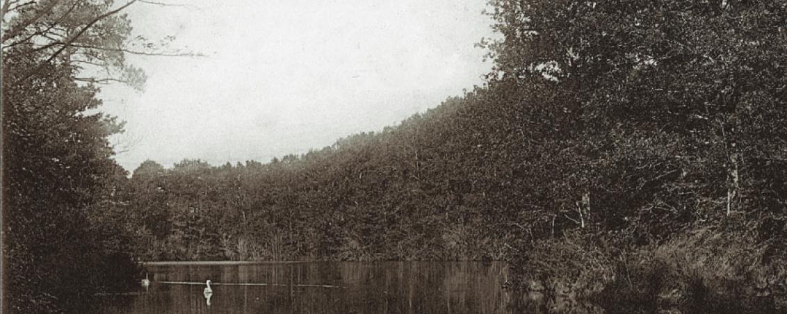 Carte postale représentant le lac de Castillon. Non datée, Ville de Tarnos