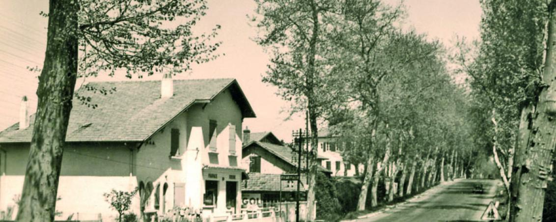 La pharmacie dans les années 1950, Ville de Tarnos